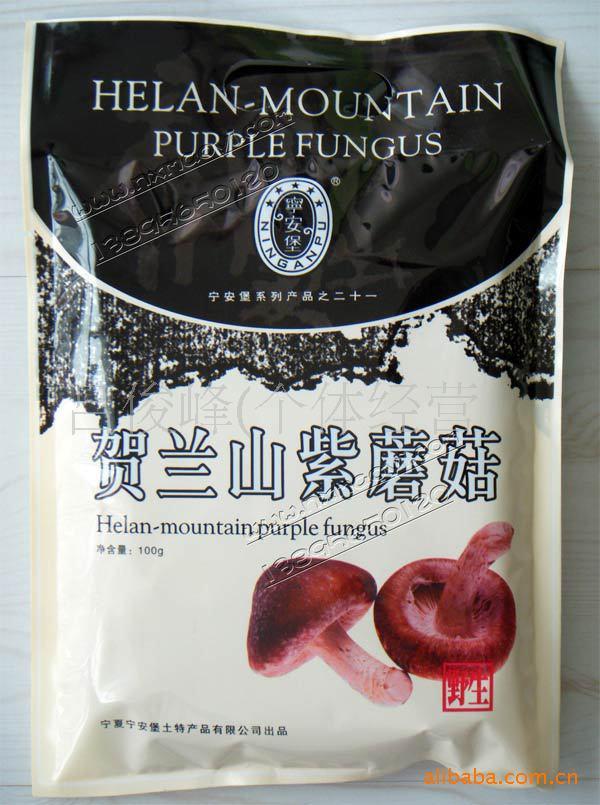 批发供应宁夏特产 贺兰山野生紫蘑菇【100克】