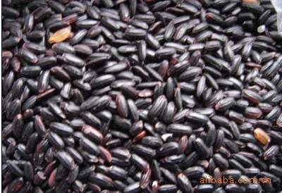 黑米 血糯米  大米  黑色食品   黑色杂粮 营养食品 有机食品