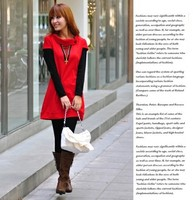 Женское платье Wholsale 2013 New Autumn long-sleeve sweet patchwork faux two piece Women's Casual Dress