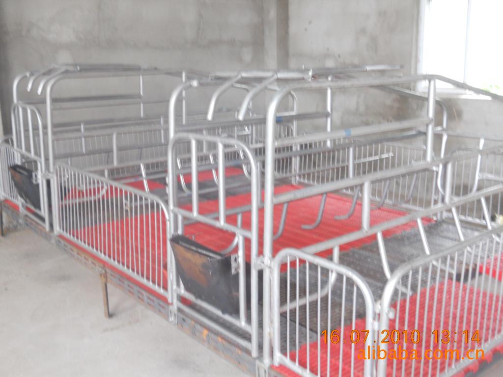 供应优质自动化产床、保育床、定位栏、猪床