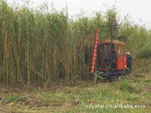 供优质农业新机械,芦苇收割机 收割机 新收获机械 秸秆收割机械