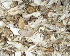 批发 野生菌 食用菌 鸡腿菇干品