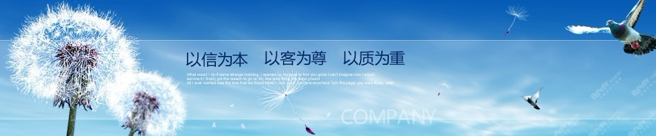 供应翔龙照明DL-192厂家生产 户外灯具8米太阳能路灯图片_1