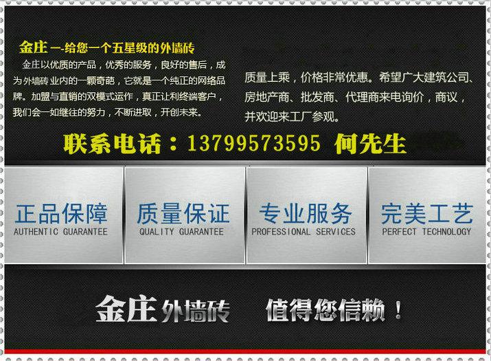 外墙砖产品供应商供应3d喷墨别墅外墙专用砖3d60009