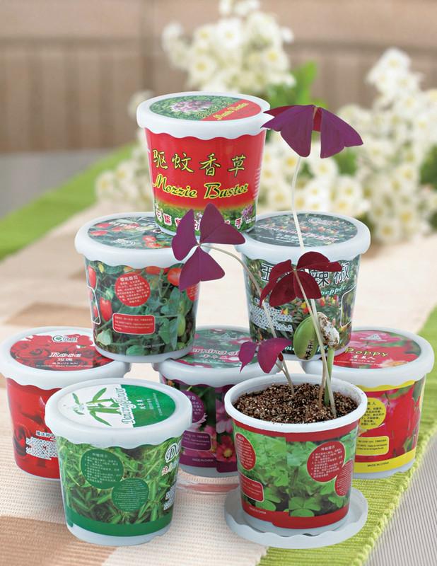 园艺花盆系列