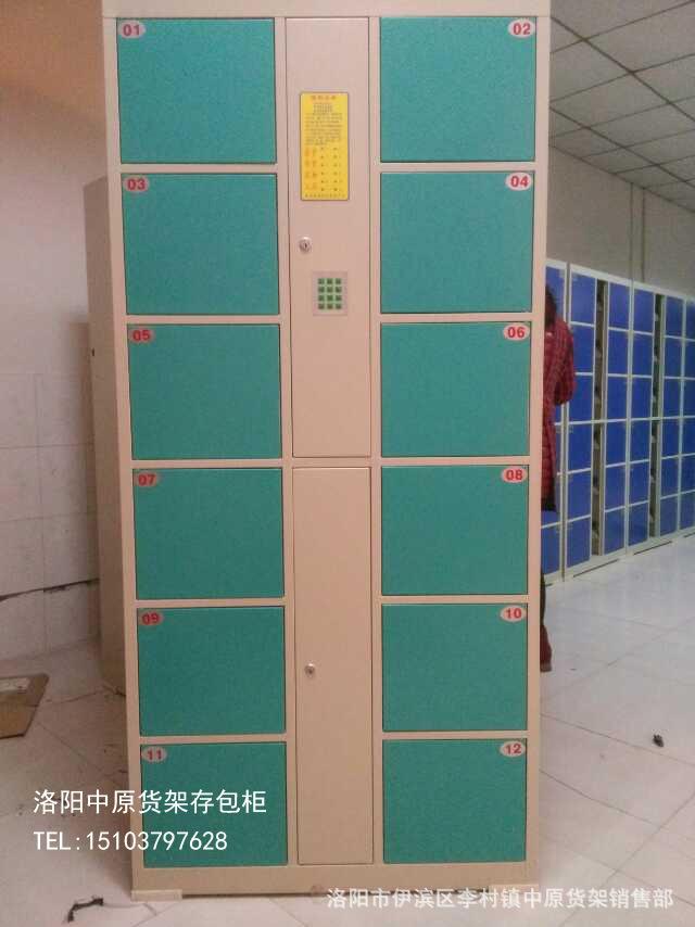 厂家现货供应(定制)职工储物柜 电子存包柜 车站寄存柜