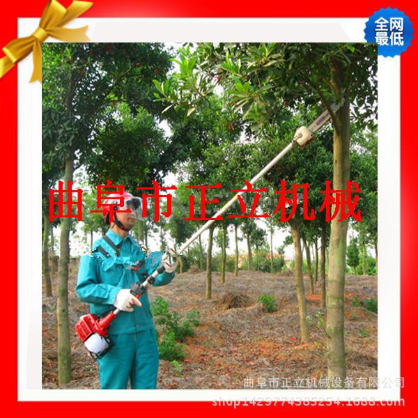 园林绿化小型工具 高枝修剪机 小型高枝锯 高枝油锯 灵活方