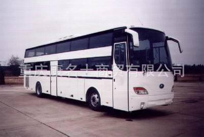 安凯豪华卧铺客车HFF6120WZ-4的图片4