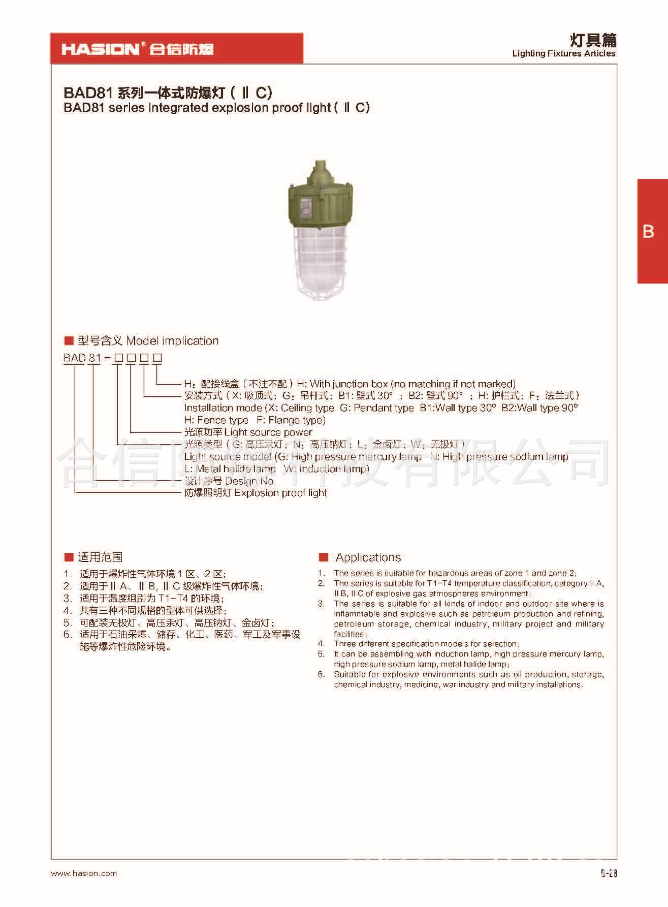 BAD81系列一体式防爆灯(II C)